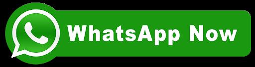 button whatsapp